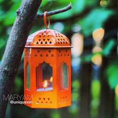 ..   (Unique xm) Tags: love days best goodbye henna miss ramadan welcom