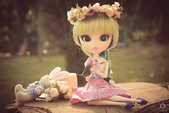 A romantic day (Clothing.MINIM) Tags: flower cute bird nature fashion garden doll dress handmade hipster luna plastic groove crown pullip pinup inc toki doki cheonsang cheonha