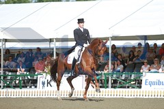 IMG_3438 (RPG PHOTOGRAPHY) Tags: coral reef cdi seidel hickstead 2013 guenter wylea