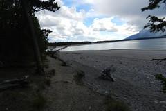 Grand Teton-Lago Jackson-USA 13 (Rafael Gomez - http://micamara.es) Tags: park parque usa lake ro lago snake grand jackson national wyoming teton nacional cordillera eeuu