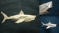 Nguyen Ngoc Vu - Great White Shark (shuki.kato) Tags: 2 white paper shark origami great fold vu nguyen kato vog shuki ngoc