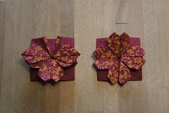 Kusumita-Blüte und Schmetterlingsvariation (Tagfalter) Tags: