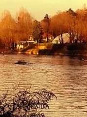 In Torino... (Valter49 away) Tags: italy rio river torino italia fiume po valter valter49 mygearandme