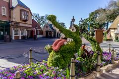 TickTock in the UK (Disney in the Details) Tags: peterpan epcot flowerandgardenfestival ticktock wdw topiary unitedkingdompavilion
