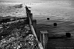 Vers les canards (Fabrice Denis Photography) Tags: seascapephotography france bwphotography blackandwhite charentemaritime loix coastalphotography blackandwhitephotography monochromephotography sea nouvelleaquitaine ocean seascapes seascapephotos ilederé oceanphotography blackwhitephotos seascapephotographer monochrome coastal fr noiretblanc