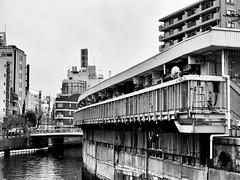 2017年3月31日 (atmo1966) Tags: yokohama digitalphotography canon canonpowershots90 blackandwhite