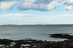 Farne Islands (Geordie_Snapper) Tags: canon5d3 canon2470mm coldday farneislands holidayembleton march northumberland seahouse spring