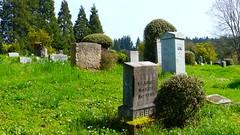 Mulkey Cemetery in Eugene, Oregon