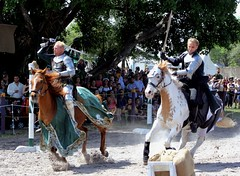 Knight Action! (PelicanPete) Tags: floridarenaissancefestival march2017 25thannual deerfieldbeachflorida florida southflorida unitedstates usa renaissancefestival armsandarmor joust thejoust knights horses action emotion excitement skill kingsroyalorders fieldofdreams horse horsebackrider knight battle gear helmet shield lance sword noblecauseproductions sanantoniotexas viewingstand nobleattire portraitsofrenfest portrait people smile outdoor fun pose greatfacesofrenfest festivalemployee sunlit walk stroll costume happy face shadow closingday cast castofcharacters farewell faretheewell eatdrynkandbemerrie chariotsoffire exciting knightaction fullspeed