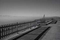 Le Suchet (VD) (Toni_V) Tags: m2403642 rangefinder messsucher leicam leica mp typ240 28mm elmaritm12828asph hiking wanderung randonnée lesuchet vd vaud waadtland blackwhite schwarzweiss bw monochrome sixfontaineslesuchetledayorbe landscape switzerland schweiz suisse svizzera svizra europe ©toniv 2017 170408