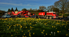 Coming through (PentlandPirate of the North) Tags: ale transport beer congleton astbury abnormalload daffodils heavylift faun