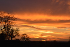 Reddishness (♫ Russ Hamer) Tags: sunset red old dalby ride home trees fields