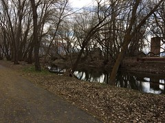 IMG_0582 (augiebenjamin) Tags: lakeviewparkway lakeshoredrive provo utah mountains provorivertrail trees spring winter spanishfork nebo bicentennialpark oremcity provocity utahvalley utahcounty oremarboretum
