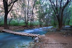 IMG_0523 (PrashantVerma) Tags: havasupai havasu supai blue green water river flow stream landscape serene tranquil wood bridge steps forest arizona grand canyon canon 6d 16mm