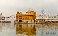 Golden temple, Amritsar (Rohan2021) Tags: goldentemple golden temple amritsar sikh holy place worship canon 6d gold