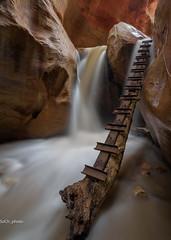 Numbness (sochhoeung) Tags: hiking zion kanarravillefalls waterfalls ladder slotcanyonhiking coldwater freezingwater sandstone landscape longexposer le