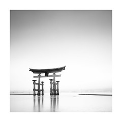 The great Torii (Chris YK Wong) Tags: 4x5 45 大片幅 風景 黑白 art blackandwithe bw chamonix film ilford japan landscap landscape largeformat miyajima negative schneider torii