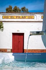 El Pilar (Alicia Clerencia) Tags: agua water fuente spring azul blue villages pueblos amarillo yellow zalamealareal