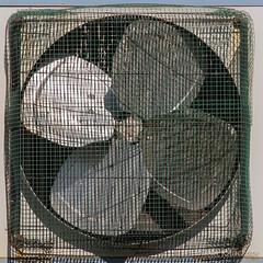 Le ventilateur (Olivier_1954) Tags: album vacances amies famille france alice balade calais colette eva mamyetpapy maxence michel pâques hélice séjour ventilateur visite côte dopale mer photographie pales