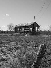 Picking At The Bones (Brian Rome Photography) Tags: urbex urbanexploration travel discovery barn farm farmland barnboard black white photograph homestead