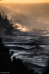 Ore 07.25 I primi raggi di sole (DiegoGuidone) Tags: focus focale liguria canon eos 6d obbiettivo sigma 150600mm f563 dg os tempo desposizione 1500sec valore dapertura sensibilità iso lunghezza mare spiaggia acqua cane cresta onda oceano raggi di sole alba mattino sunset tramonto
