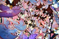 希望之鴿 Christmas Dove (ReFinism) Tags: taiwan exploretaiwan instataiwan beautifultaiwan iformosa iseetaiwan amazingtaiwan vscotaiwan vsco vscolike bpintaiwan igerstaiwan instatravel taiwanlandscape discovertaiwan flickrtaiwan flicklandscape canon canon650d 650d canontaiwan christmas decoration light