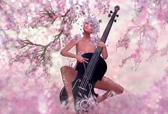 Cherry Blossom (Alexa Maravilla/Spunknbrains) Tags: zibska astralia bauhausmovement kustom9 theliaisoncollaborative secondlife outdoors people music photography surreal fantasy woman girl model cherry blossom