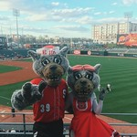 Mr. and Ms. Wuf in Charlotte.
