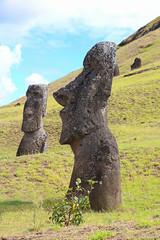 Easter Island Heads (fuzzball5) Tags: easter island moai head rapa nui rano raraku chile tufa volcanic ash quarry gate 1 2017