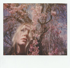 untitled (Britt Grimm) Tags: instantphotography instant instantfilm impossibleproject instantgratification analogue analog analoguephotography analogmag analogmagazine ophelia polaroid polavoid polaroidspectra spectra springtime spring spectrasystem cherryblossoms dogwoodtree snapitseeit selfportrait film filmisnotdead flowers