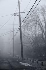 Lane & Fog (Solojoe) Tags: special fog fogday foggy lane alley poles dof zoom nikkorafs70200f28gedvrii compressed leaning wires wire light lightpole