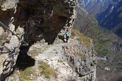 Via degli Ospizi - tratto espsoto (Tabboz) Tags: montagna escursione valle cordevole fiume torrente ruscello cime panorama pascoli sentiero