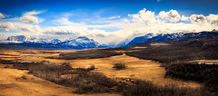 View of Mountains (Bluesky251) Tags: clouds dry farm grass landscape mountains nationalpark nature silent skyline snow spring sunny warm watertonpark wind beautiful view