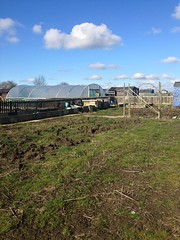 Photo of Our allotment