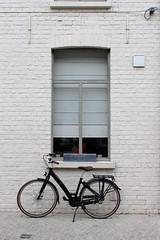 Fiets - Bicycle (Brian Aslak) Tags: damme westvlaanderen vlaanderen flandre flanders belgië belgium belgique europe window bicycle fiets velo