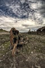 Never Break the Chain (Jon_Wales) Tags: aberavon aberafan wales welsh inlet estuary river age chain rust industry old spring cymru seaside porttalbot tide mud link