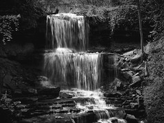 My favorite spot in the area. (Zoom for insane detail) (andrewethomp) Tags: digital lookslikefilm raw ohio dayton mediumformat sharp creamy depth outdoor 28 vsco vscofilm phaseone digitalback 80mm iso50 hasselblad h1 p65 glow hasselbladhc capture one black white blackandwhite tones home afternoon monochrome woods waterfall longexposure