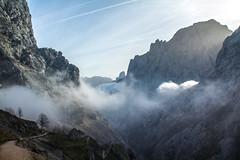 Ruta del Cares (Juan R. Ruiz) Tags: picosdeeuropa mountains montañas routes rutas rutadelcares cares riocares cantabria nature naturaleza spain españa europa europe canon canoneos60d