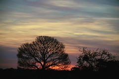 Sunset (StephUSA) Tags: sunset coucherdesoleil couchédesoleil bretagne france nikon nikond5100 d5100