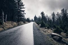 When you are alone (Gruenewiese86) Tags: harz hã¼tte wald wã¤lder forest forestscape explore exploreharz germany german deutschland deutsch wälder wandern waldlandschaft hiking hütte
