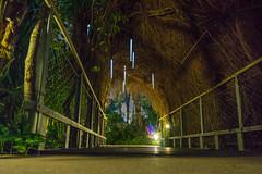 Tropical Island (Tobias S aus L) Tags: sony a6000 kitlens 1650mm tropicalisland tropical amazonia brigde berlin night lights