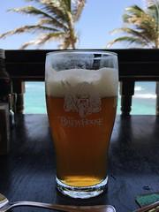 Barbados Brewhouse summer ale at Atlantis Hotel, Bathsheba, Barbados (Paul McClure DC) Tags: barbados bathsheba beer stjoseph hotel caribbean westindies apr2017