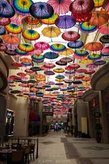 Life Full of Colors (amirdakkak1) Tags: color mall dubai dubaimall indoor umbrella colors colorful human man woman boy girl women men colour hallway