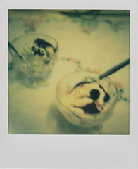 Ice-cream (L. McG.-E.) Tags: film polaroid sx70 instant analogue px70 impossibleproject colorprotection