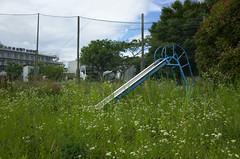 Dissolve in grass (tetsuo5) Tags: gr fujisawa 公園 藤沢 kawana 滑り台 explored 川名