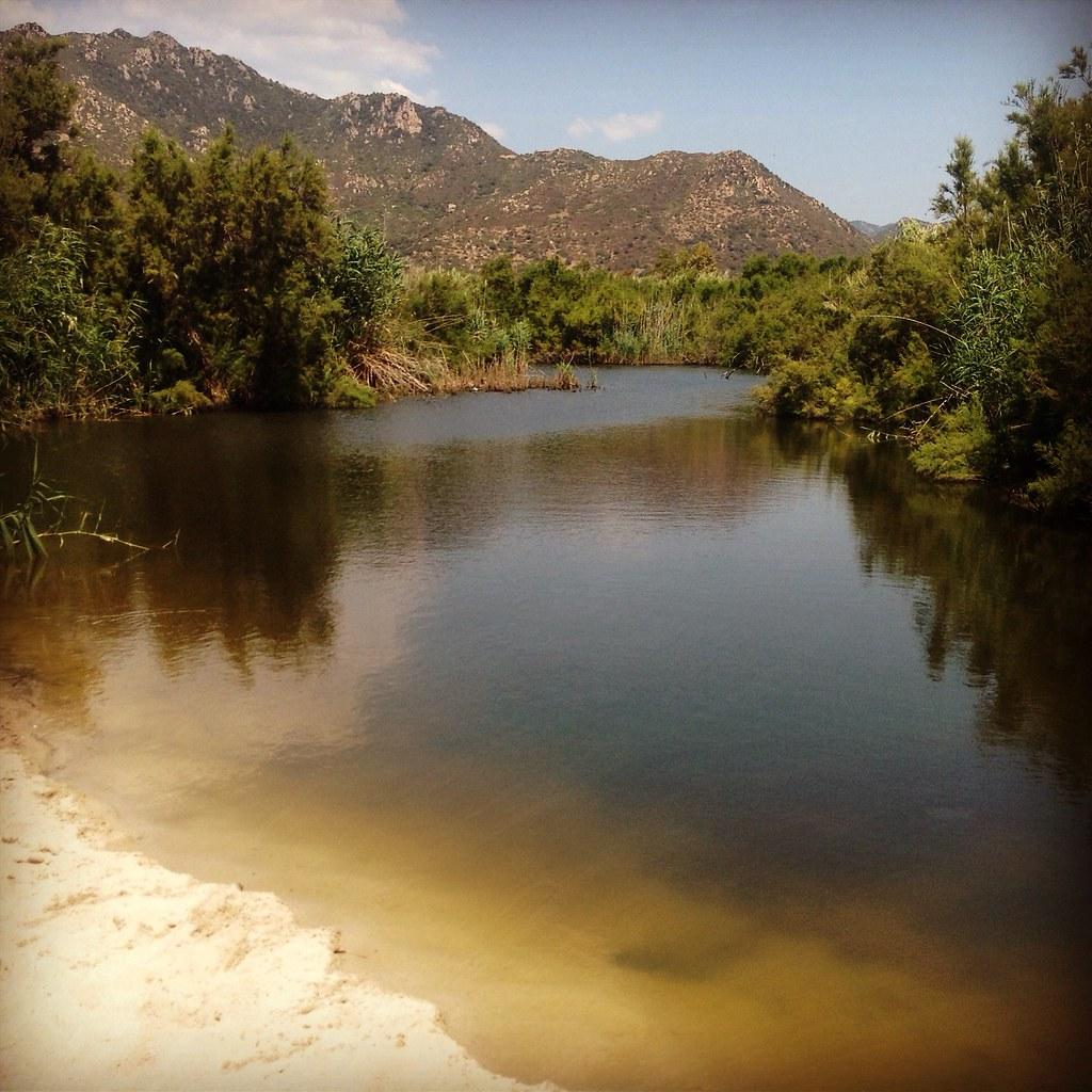 The world 39 s best photos of acqua and biscia flickr hive mind for Eliminare acqua verde laghetto