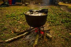 Jungle Tamales (liliraygoza) Tags: archaeology maya belize tamales jungle monkeys junglefever fieldschool mayans lamilpa rb25