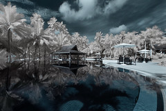 Summer Dreams (Shutter wide shut) Tags: holiday pool reflections ir philippines wideangle canoneos20d resort infrared bohol panglao falsecolor canonefs1022mmf3545usm henannresort irmodifiedcanoneos20d