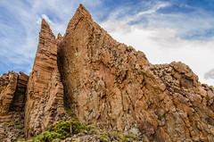 A complex skin (_aic) Tags: tenerife teide canaryislands islascanarias volcn parquenacionaldelteide