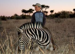 Namibia Safari - Lake Lodge 67